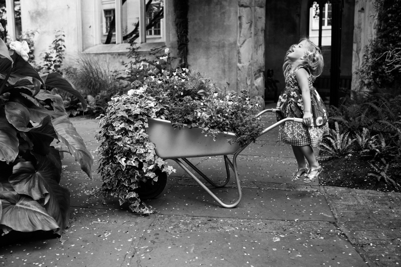 Girl jumping in the air whilst trying to push a wheelbarrow full of flowers.