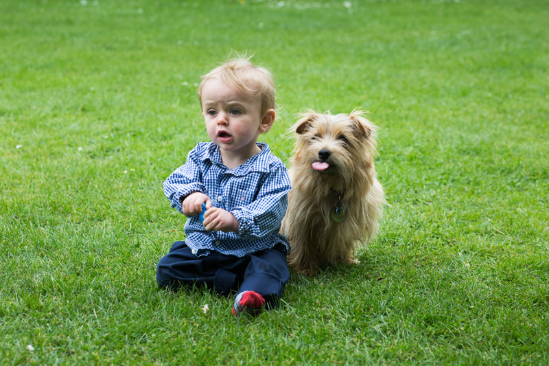 Baby boy sitting with his dog, who has his tongue out.