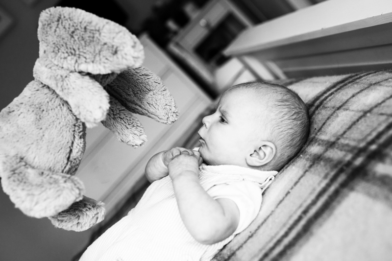 Little baby looking at toy rabbit.