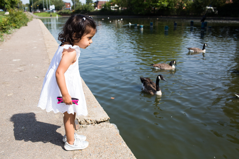 Girl looking at duck pond.
