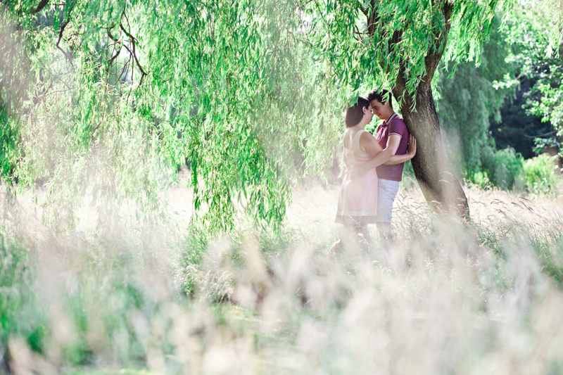 Couple hugging under tree in long grass.