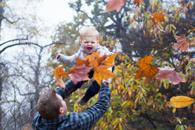 Baby boy being thrown in the air by his dad, amongst the autumn leaves.