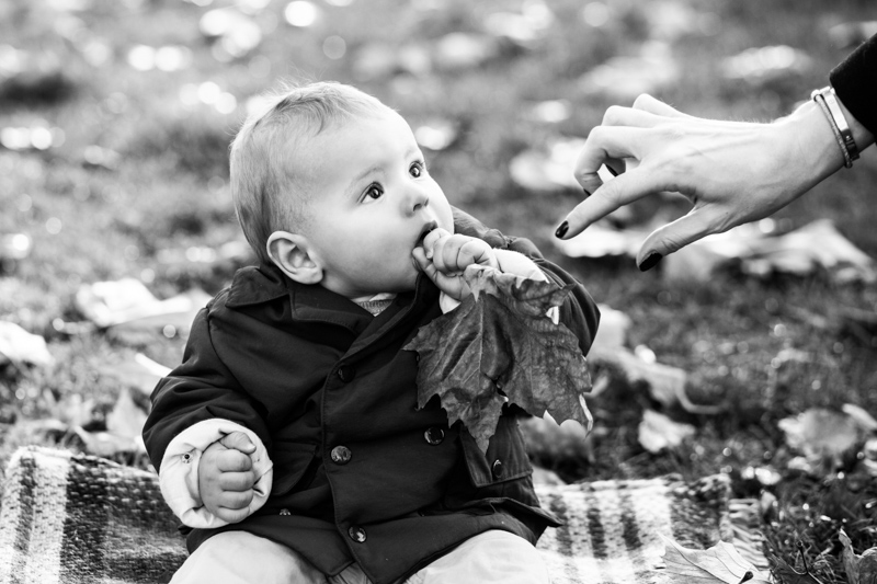 Baby eating a leaf with a hand coming to get the leaf.