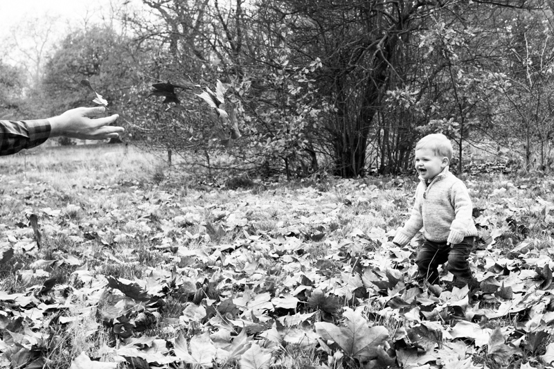 Someone's hand throwing autumn leaves to a little boy.